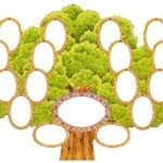 drevo1