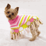 dogs clothes6