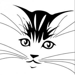 Загадочная картинка: А где здесь кошка?