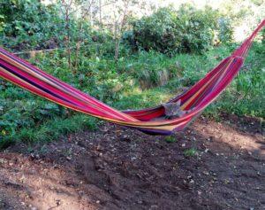 Как устроить пикник в саду по версии светского журнала