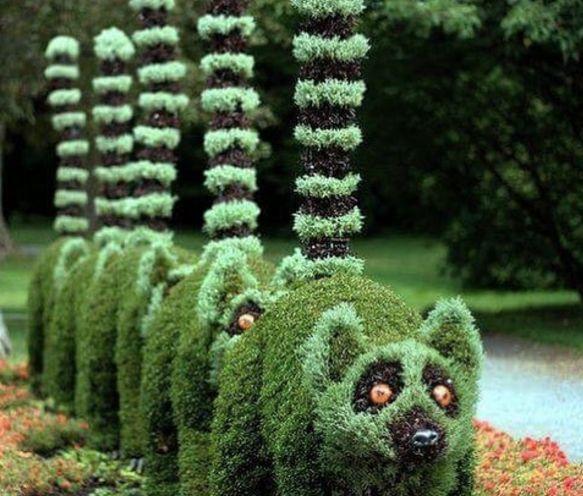 Бюстгальтер для дерева и другое АНТИрукоделие для сада и двора