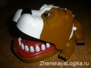 собака из интернет магазина